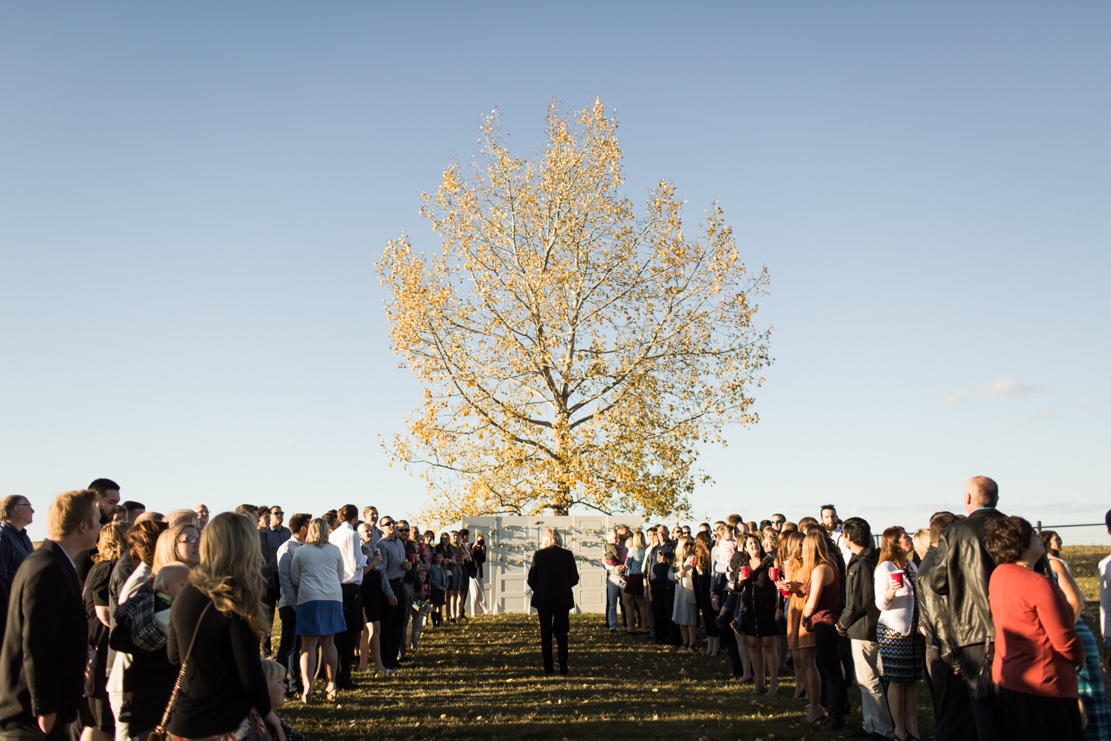 39-willow_and_wolf_photography_stef_and_pete_canmore_wedding_blog