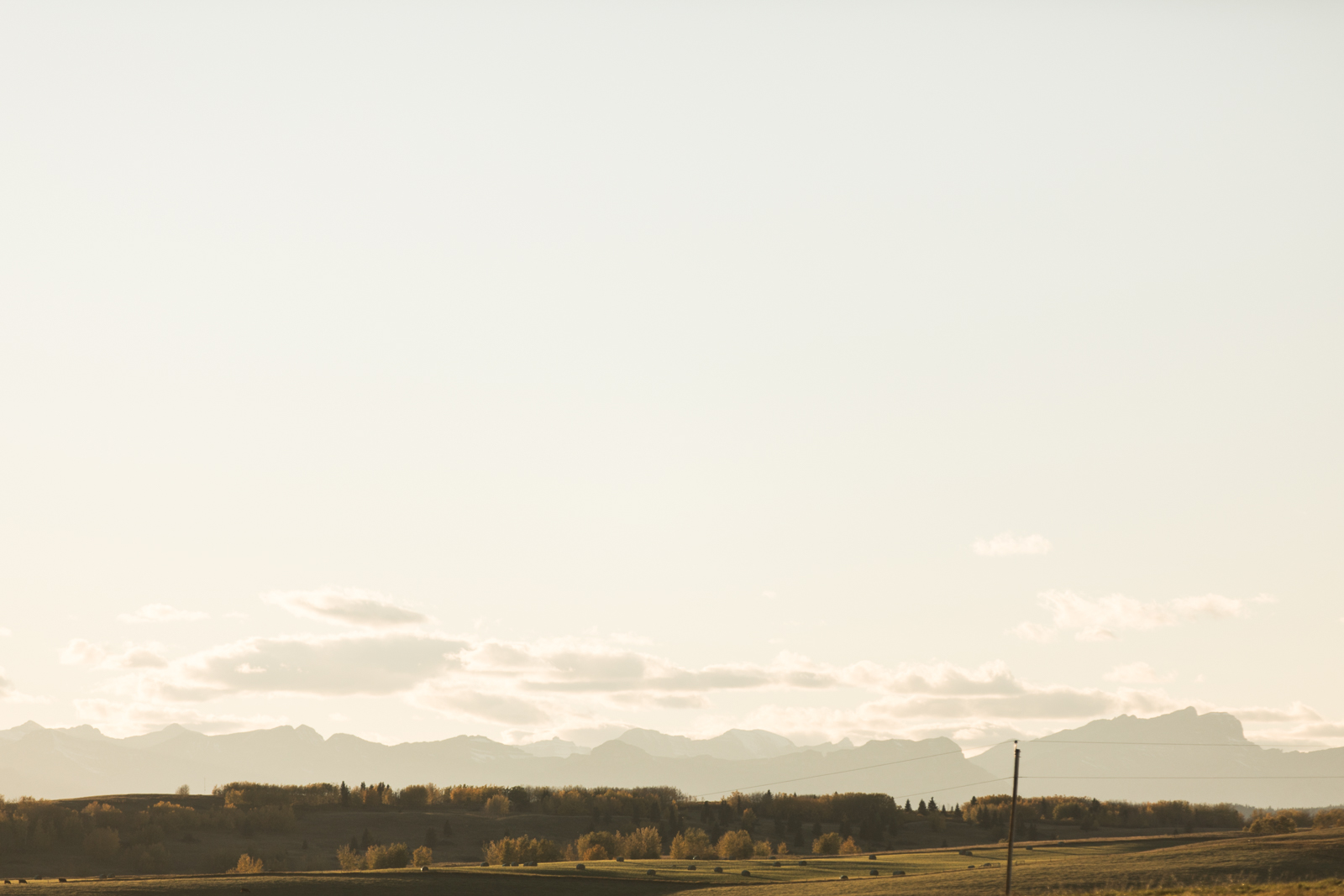 61-willow_and_wolf_photography_stef_and_pete_canmore_wedding_blog