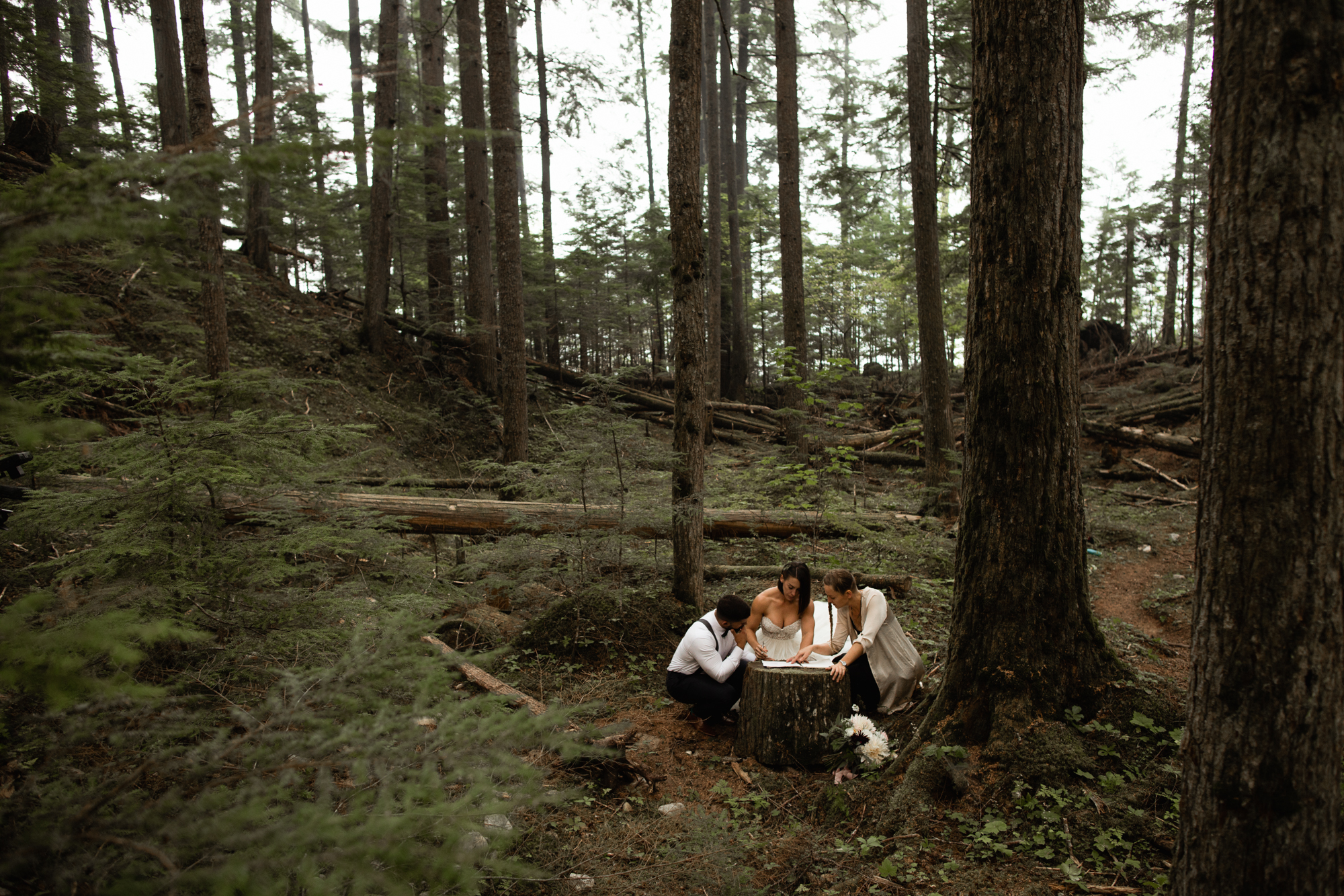 signing at elopement ceremony in Bc forest