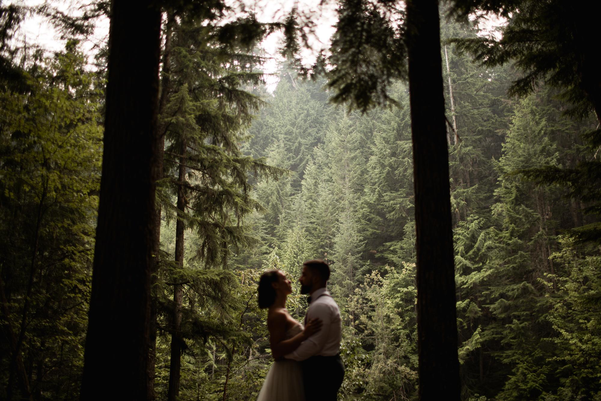 BC forest elopement
